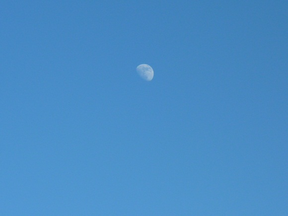 image of the Moon in Daytime